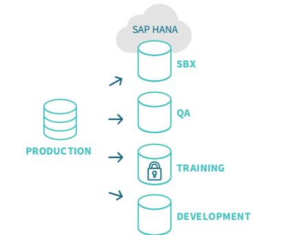 Qlik SAP Gold Client suite on hana
